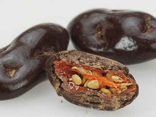 Dark Chocolate Goji Berry